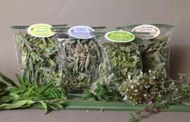 organic-herbs-for-tea8