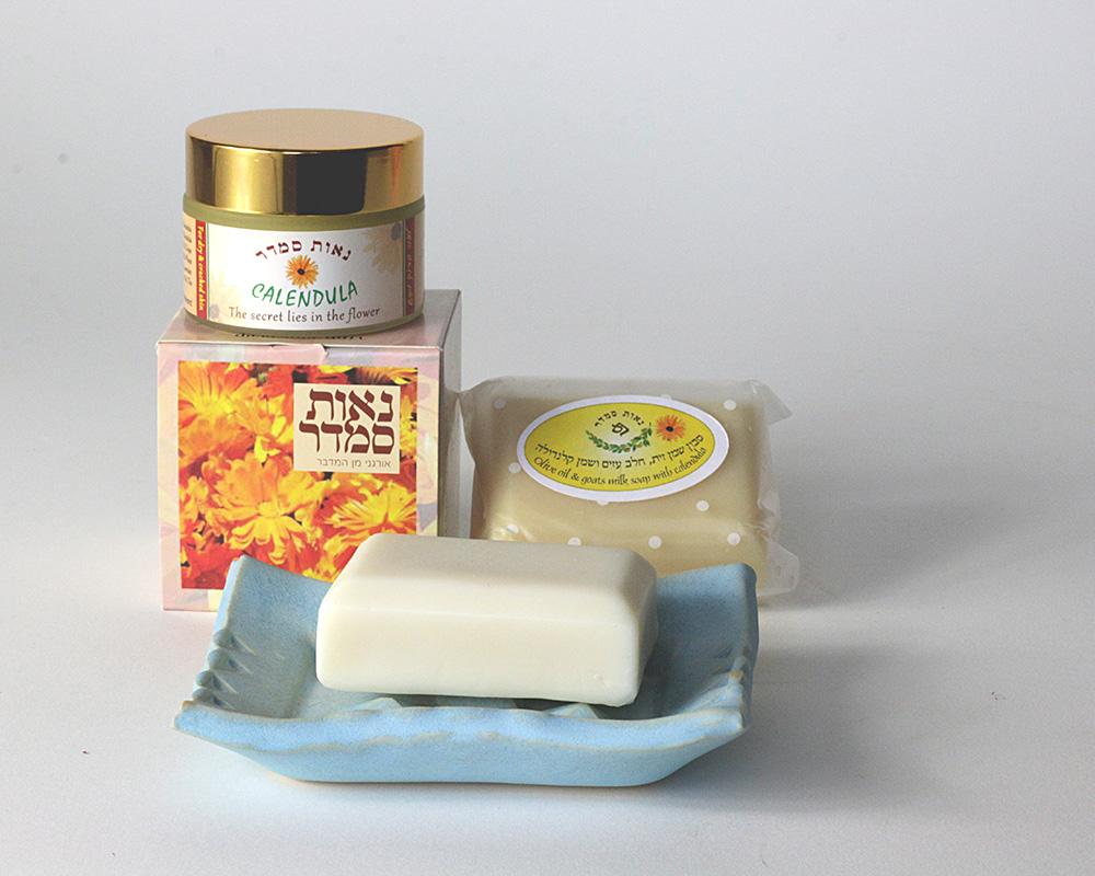 blue-soap-dish-(1)